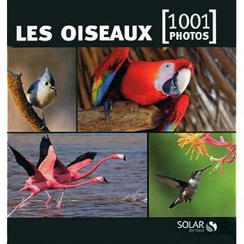 Les oiseaux en 1001 photos NE