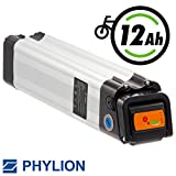 Phylion Akku XH259-12J für E-Bike Pedelec 24V 10Ah für u.a. MiFa, Rex, Prophete