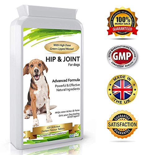 Advanced Hip and Joint Support Glucosamine for Dogs - Powerful Chondroitin, MSM, Curcumin & Green Lipped Mussel Dog Joint Supplement - with Vitamins E & C, 120 Tablets, Made in UK