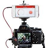 Triggertrap Déclencheur de smartphone Mobile Dongle V3pour Nikon MC-DC2