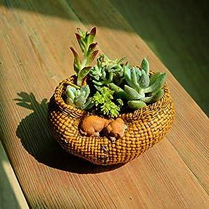LASISZ Colección Sleeping Cat Bamboo Basket Decoración del hogar Accesorios y decoración de Jardines de Hadas y macetas…