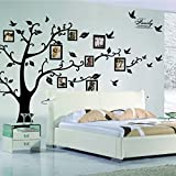 X-Large DIY Family Tree Wall Art Stickers Removable Vinyl Black Trees Photo Frames Wall Stickers Decals Home Decor Art Decals Sticker by Lisdripe (Family Tree Photo Fames)