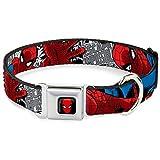 Buckle Down 22,9–38,1cm spda-Spider-Man Hund Halsband