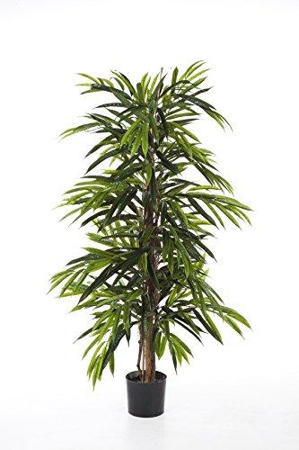 artplants Set 2 x Kunst Longifolia-Baum AKUMO, 950 Blätter, grün, Deluxe, schwer entflammbar, 210 cm – Künstliche Pflanze/Deko Baum