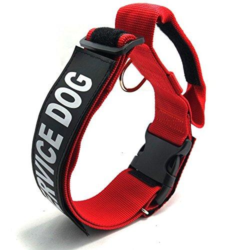 completamente-dog-puppy-traning-choke-collare-con-manico-collana-regolabile-da-collo-fibbia-piombo-c