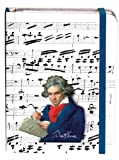 Fridolin Carnet de notes motif Beethoven Portrait et notes
