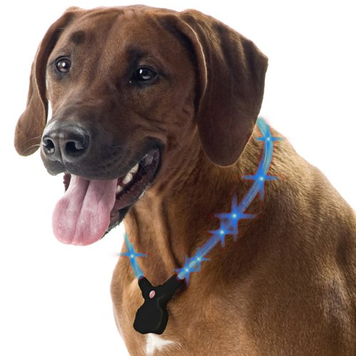 Wolters Hunde Leuchthalsband Nightshift blau 30-40 cm - 5
