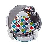 Mattel Fisher-Price FWX16 Reise-Babykorb, mehrfarbig
