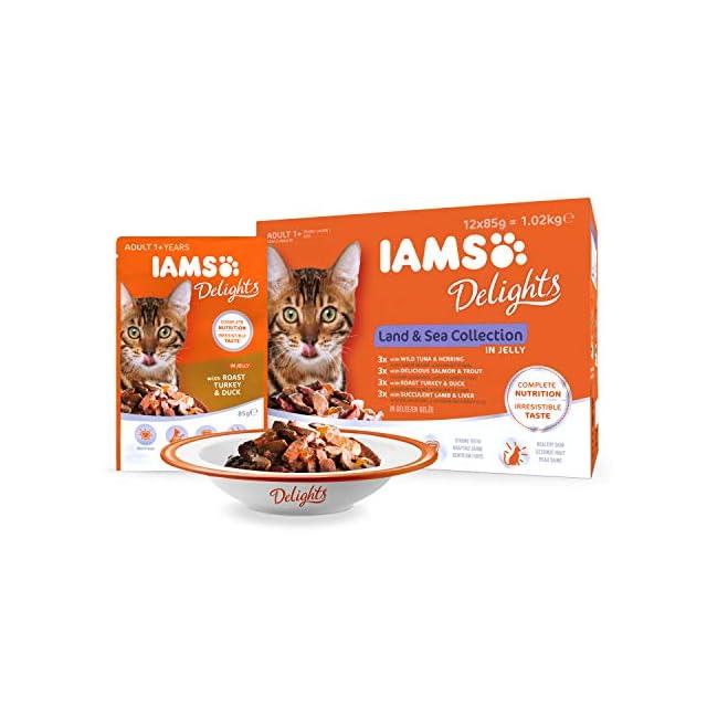 IAMS Delight - Chat adulte stérilisé ou non - 12 sachets fraicheurs exceptionnels pour des repas plaisir - 4 recettes Terre / Mer en gelée  - SANS SUCRES AJOUTES, sans OGM, sans extraits de protéines végétales, sans colorants ni arômes artificiels - 12 x 85g