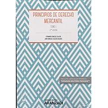 Principios de derecho mercantil. Tomo I (Manuales)