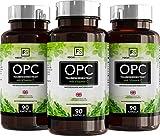 OPC Traubenkernextrakt – 600 mg mit 80 mg Vitamin C pro Portion, 90 Kapseln, Garantierter OPC-Gehalt von 70% / Polyphenole von 95% (3 Flaschen)