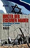 Hinter der Eisernen Mauer Band I: Israel und sein Verhältnis zur arabischen Welt: Von der Gründung Israels bis Camp David 1979 (Edition Zeitgeschichte)
