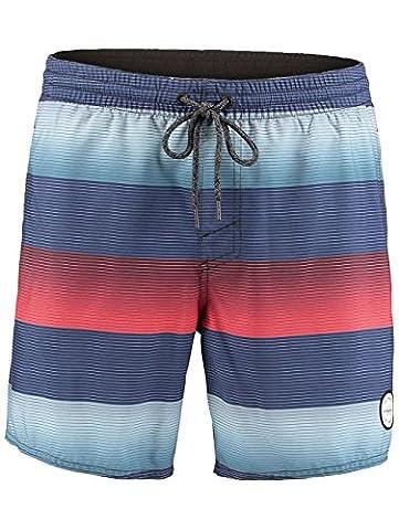 O'Neill Herren Santa Cruz Stripe Shorts Boardshorts, Blue Aop, M
