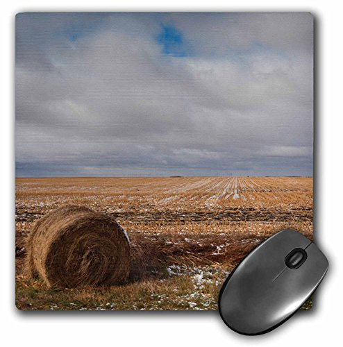 danita-delimont-walter-bibikow-agriculture-usa-north-dakota-pillsbury-farm-field-early-winter-mousep