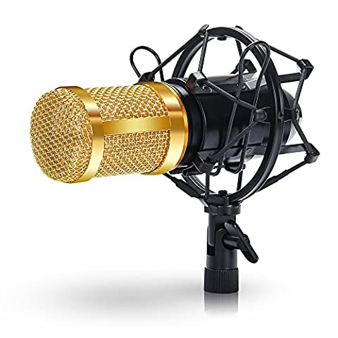 Kondensator Mikrofon, Studio Mikrofon mit Popschutz Kugel-Typ Anti-wind Schaum Kappe (Gold)