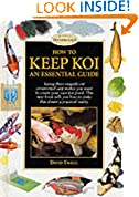 How to Keep Koi