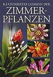 Illustriertes Lexikon der Zimmerpflanzen