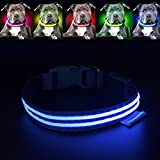 Pawow USB Aufladbare LED Hundehalsband Sicherheit Halsband Doppel-Streifen–Ihren Hund Gesehen und sichere
