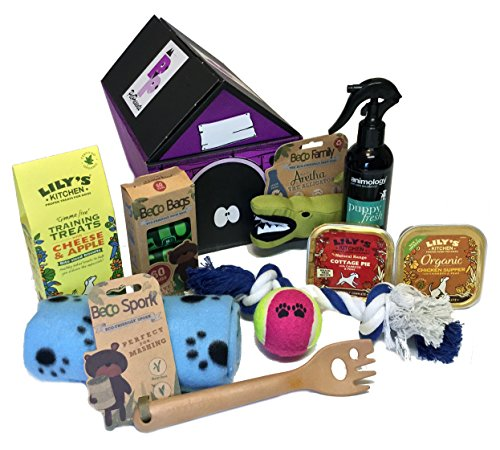 Puppy Gift Hamper - Blue