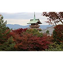 Autumn colors in Kodaiji-Entokuin (English Edition)