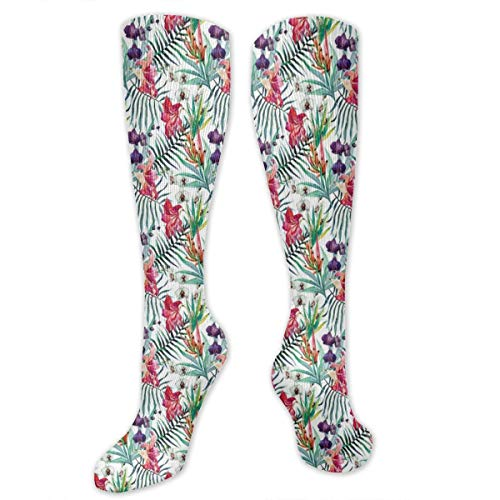 Unisex Highly Elastic Comfortable Knee High Length Tube Socks,Tropical Hawaiian Nature Orchid And Lily With Green Leaves Exotic Jungle Flora,Compression Socks Boost Stamina,Multicolor (Girl Jungle Costume)