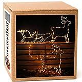 Rentier-Gespann mit Schlitten, 200 LED warmweiß beleuchtet, Weihnachtsbeleuchtung außen