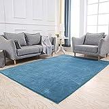 Anti-rutsch Teppich,Staubsaugen - pflegeleicht - Nicht vergie?en - kein formaldehyd - no-fade Soft teppiche für Wohnzimmer & Schlafzimmer dekor-Blau 200x300cm(79x118inch)