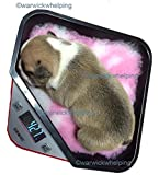 Digitial Weighing Scales Puppies Whelping with pre cut vet bedding for tray included (assorted colour supplied)