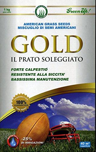 Semente americana Gold - Il Prato Soleggiato - 1 Kg