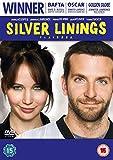 Silver Linings Playbook kostenlos online stream