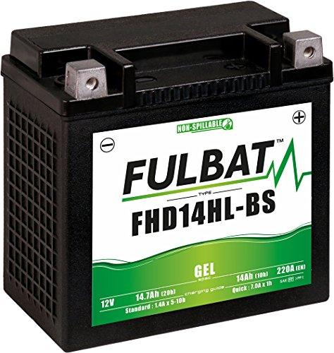 Fulbat battery YTX14L BS MF maintenance-free