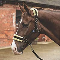 MARK TODD HEADCOLLAR FLEECE LINED WITH LEAD ROPE PONY - BROWN/NATURAL - TOD889246