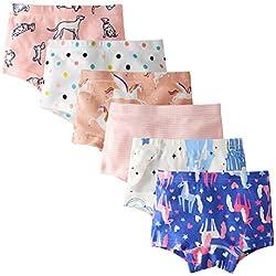 Kidear Série d'Enfants sous-Vêtement de Bébé Slip en Coton Coluttes pour Petite Filles (Lot de 6) (Style5, 7-8 Ans)