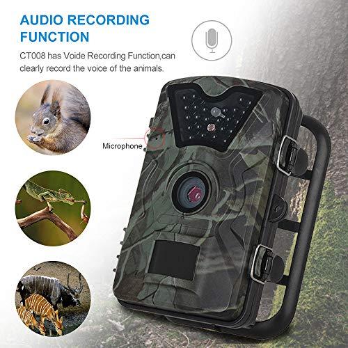 LWGHE Jagdspur Kamera, 1080P 0.3s Trigger Time Wildlife Game Kamera, 2.4''LCD Night Vision IP66 Kamera für Outdoor Field Nature Wild Scouting Home Security (Der Outdoor-glühen Dunklen In Farbe)