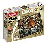 Quercetti 00803 - Chiodini Pixel Art Set 10800 Tigre immagine