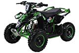 Kinder Miniquad Fox XTR PREMIUM 49 cc E-Start - Tuning Engine