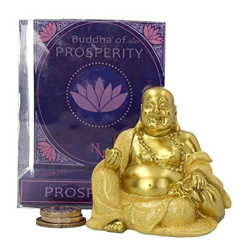 Weird Wonderful Buddha Prosperidad Hucha Caja Nemesis