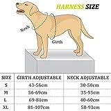 Aodoor Ultra-Soft Hundegeschirr, Softgeschirr, Brustgeschirr, Sicherheitsgeschirr, M Grün - 3