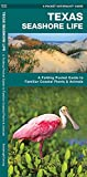 Texas Seashore Life: A Folding Pocket Guide to Familiar Coastal Plants & Animals (Pocket Naturalist Guides) - James Kavanagh, Waterford Press