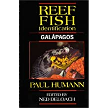 Reef Fish Identification: Galapagos by Paul Humann (1994-01-24)