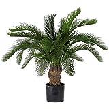 CYCUS Palm Artificiale - 22 Foglie - Verde H. 80 cm