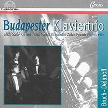 Max Bruch - Robert Delanoff: Budapester Piano Trio