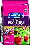 Fertiligene EFRA8 Engrais Fraisiers/Petits Fruits 800 g