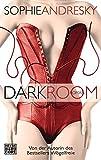 Dark Room: Roman - Sophie Andresky