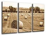 Wandbild - Bild Landschaft ländlichen Landwirtschaft, 97x 62 cm, Holzdruck - XXL Format - Kunstdruck, 26221