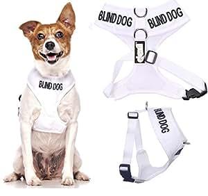 Chien aveugle White Coded Nylon rembourré étanche petite veste harnais pour chien (Non / limitée Sight) prévient les accidents en avertissant les autres de votre chien à l'avance
