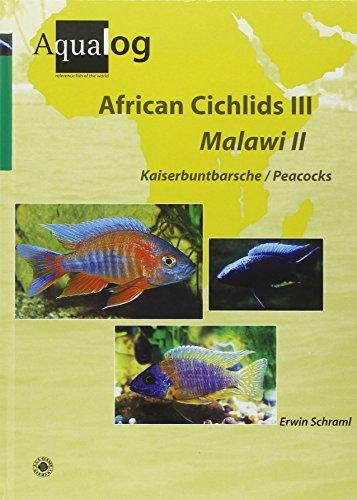 African Cichlids 03. Malawi II: Kaiserbuntbarsche / Peacocks por Erwin Schraml