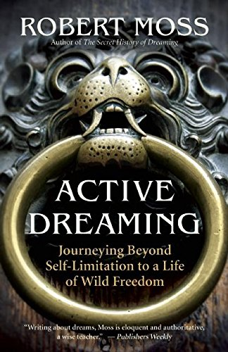 Active Dreaming Journeying Beyond Self Limitation To A Life Of Wild Freedom
