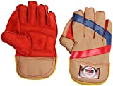 #6: VIRLOK Wicket-Keeping Gloves