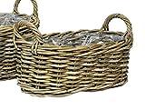 Pflanzkorb oval mit Henkel Rattankorb L 41,5 cm Blumenkorb Korb
